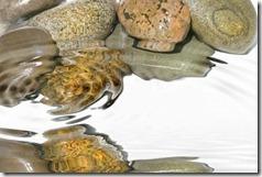 piedras húmedas