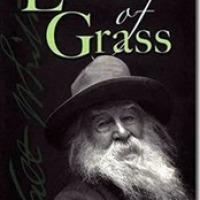 Una brizna de hierba